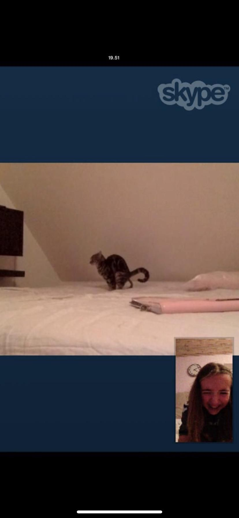 Cat pissed in the bed, went out to get new sheets, and my friend catches this while I'm away...