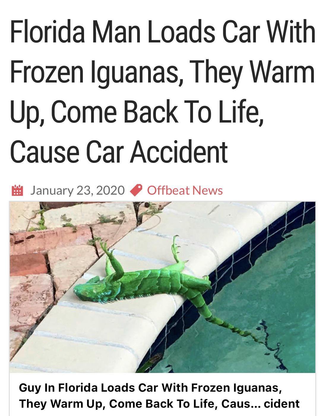 Florida Man had big plans!