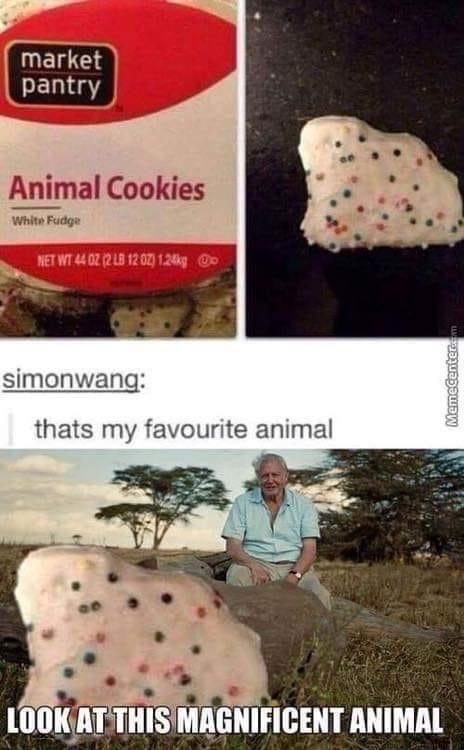 That's MY favorite animal!