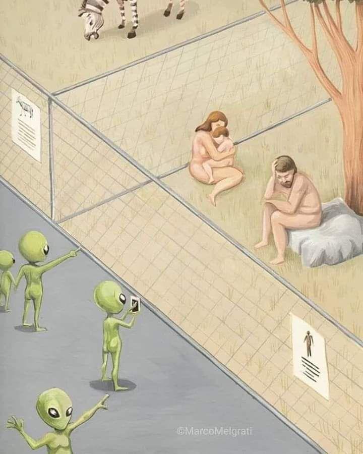 Extraterrestrial invasion !