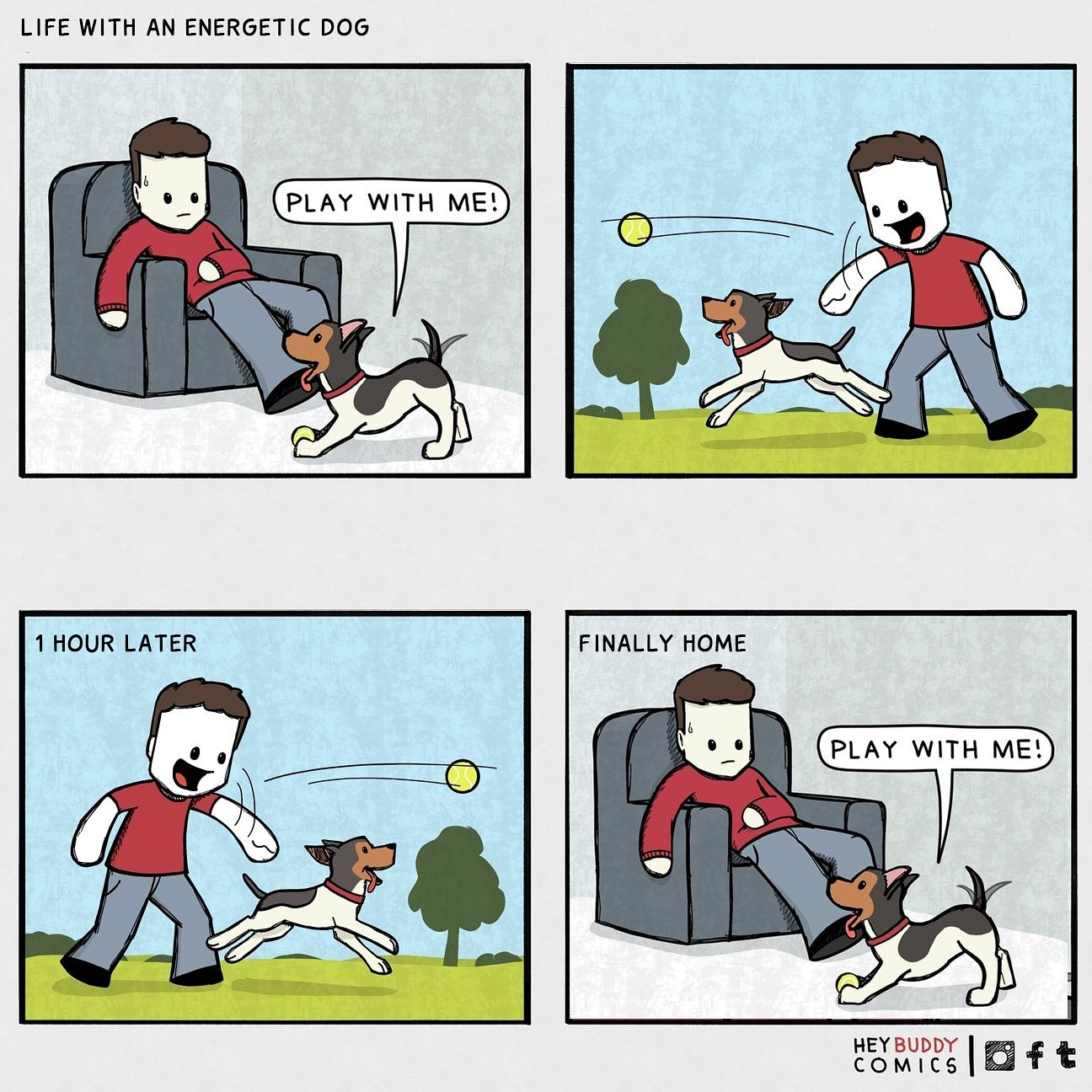 life with an energetic dog