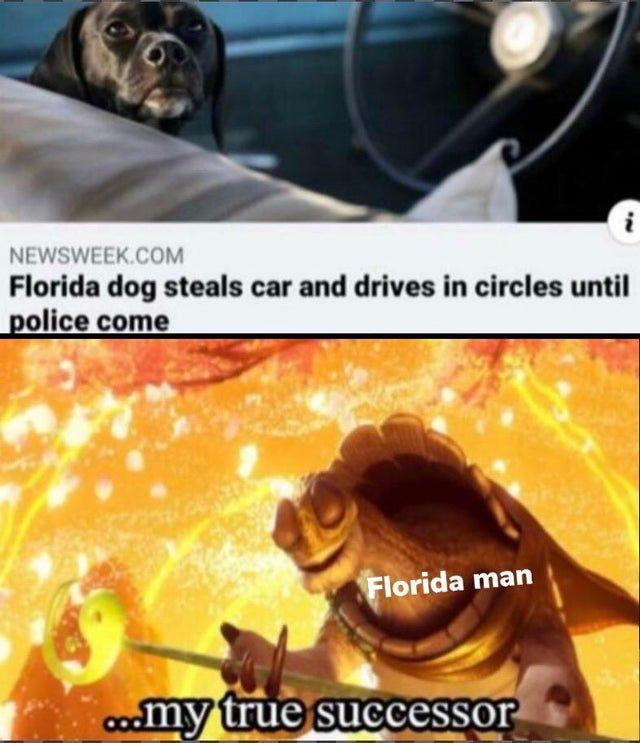 Florida Man's best friend