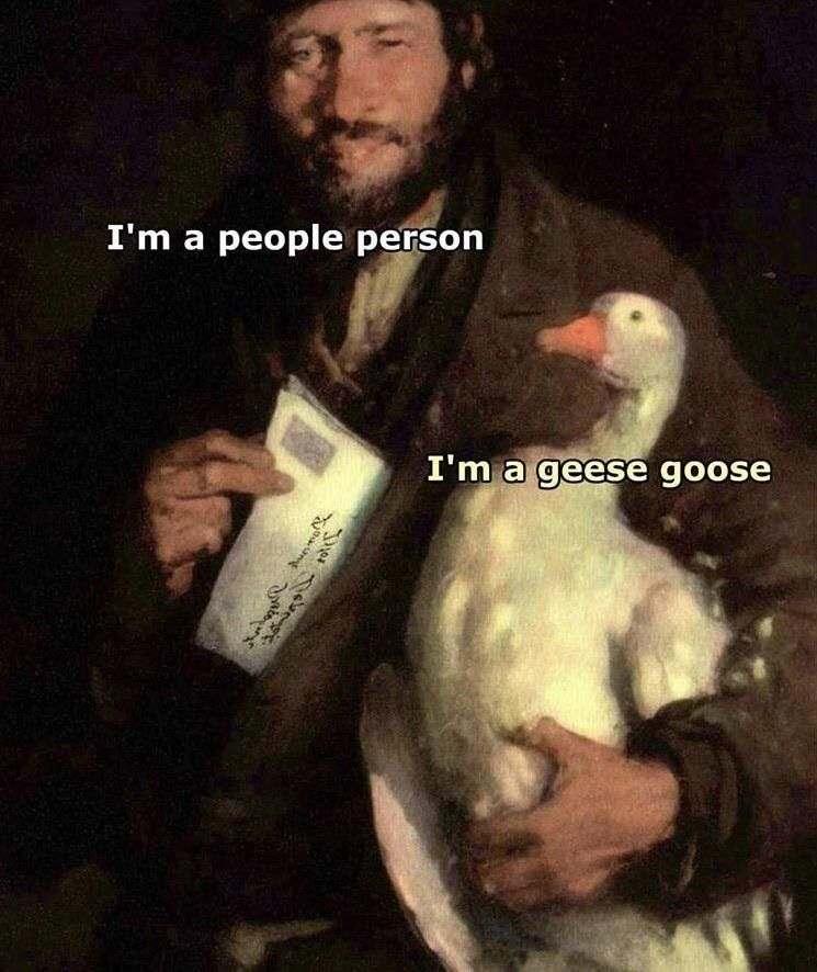 geese goose it is