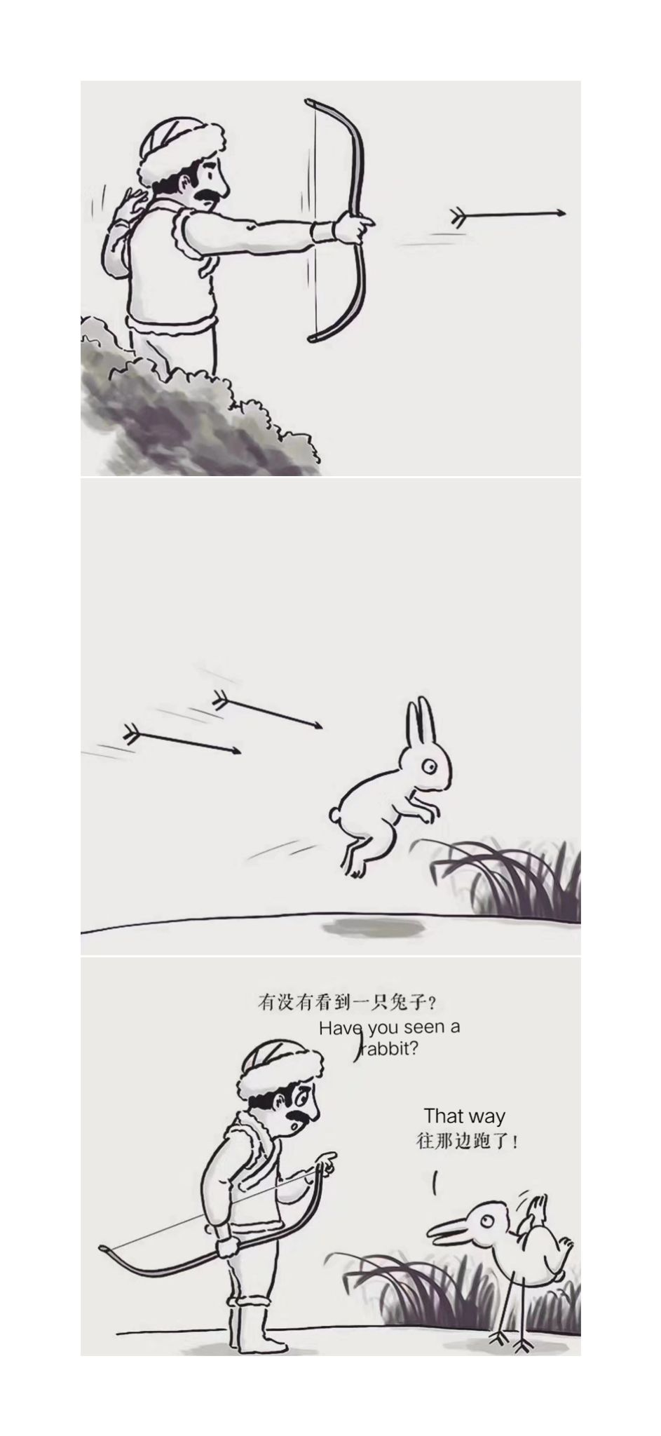 Have you seen a rabbit?