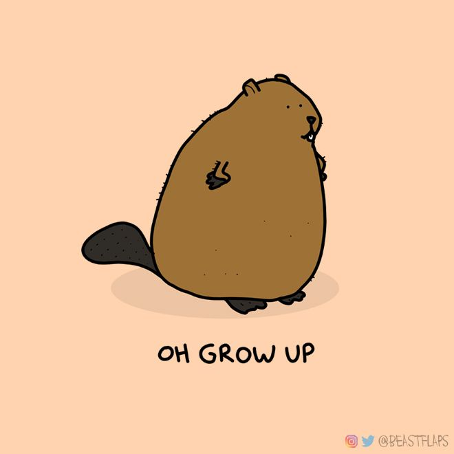 day 38 of drawing a grumpy animal every day for a year. want to see my beaver?
