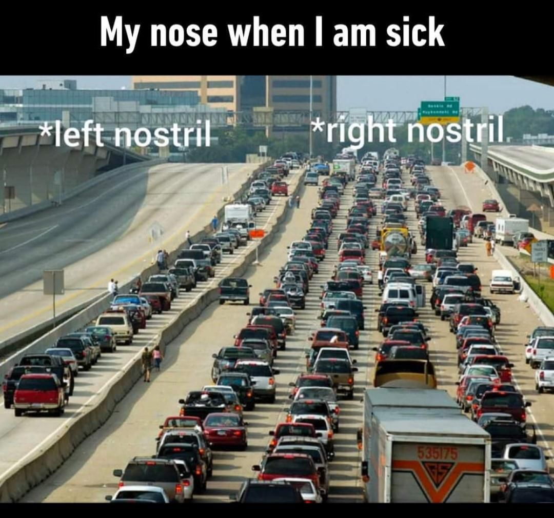 My nose is useless atm