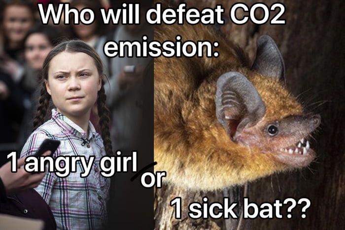 50 bucks say the bat