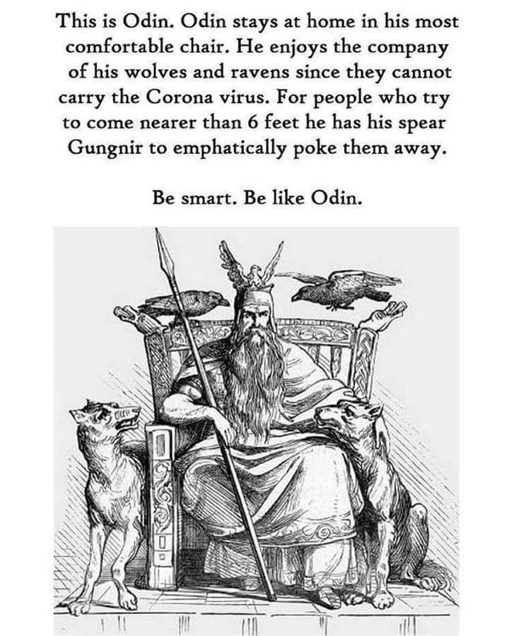 Healthy Odin