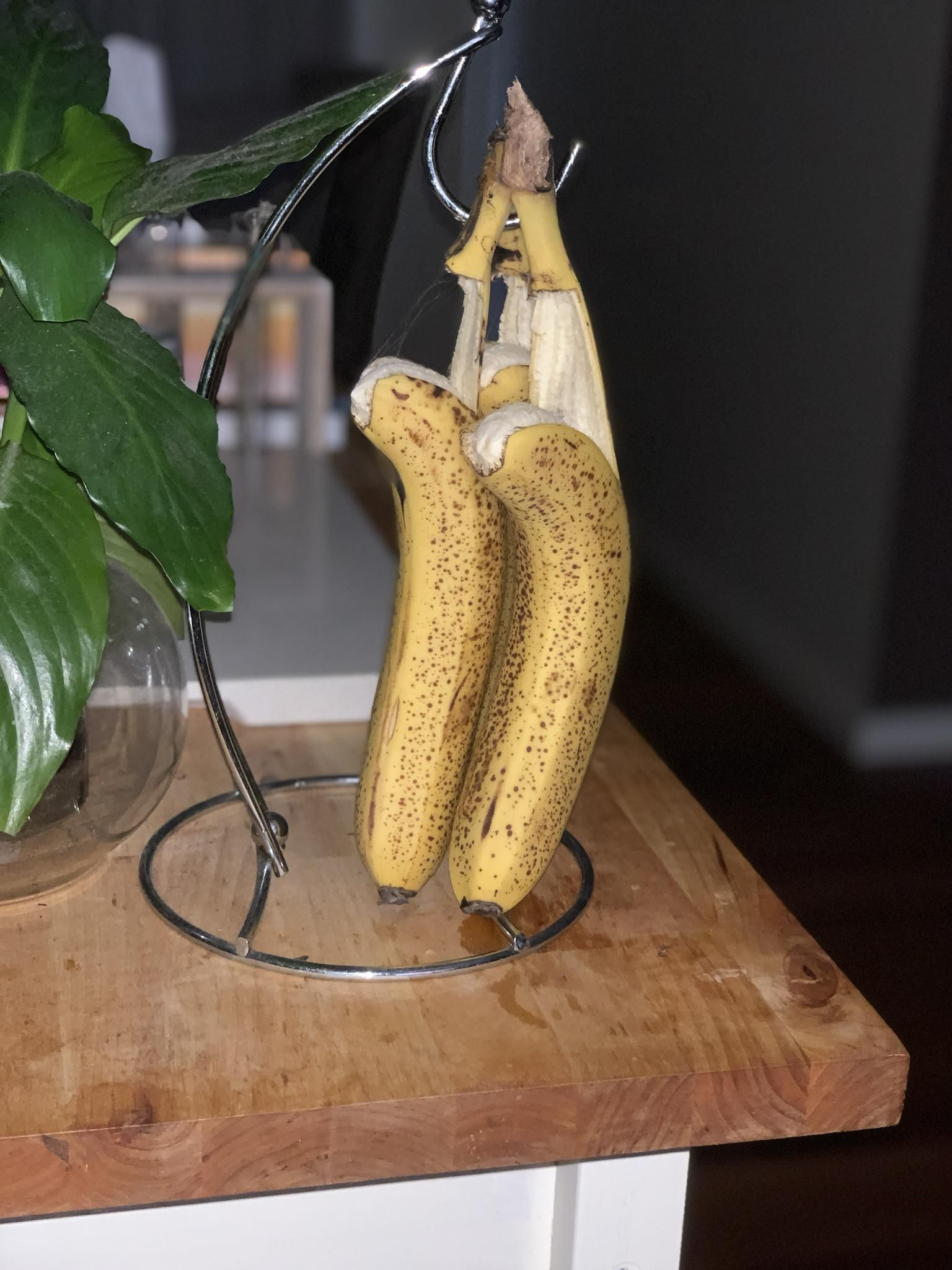 Our bananas committed suicide overnight