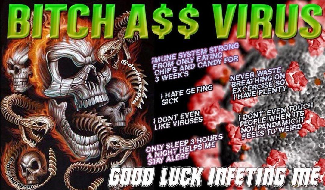 i FLEX on the BITϹH virus