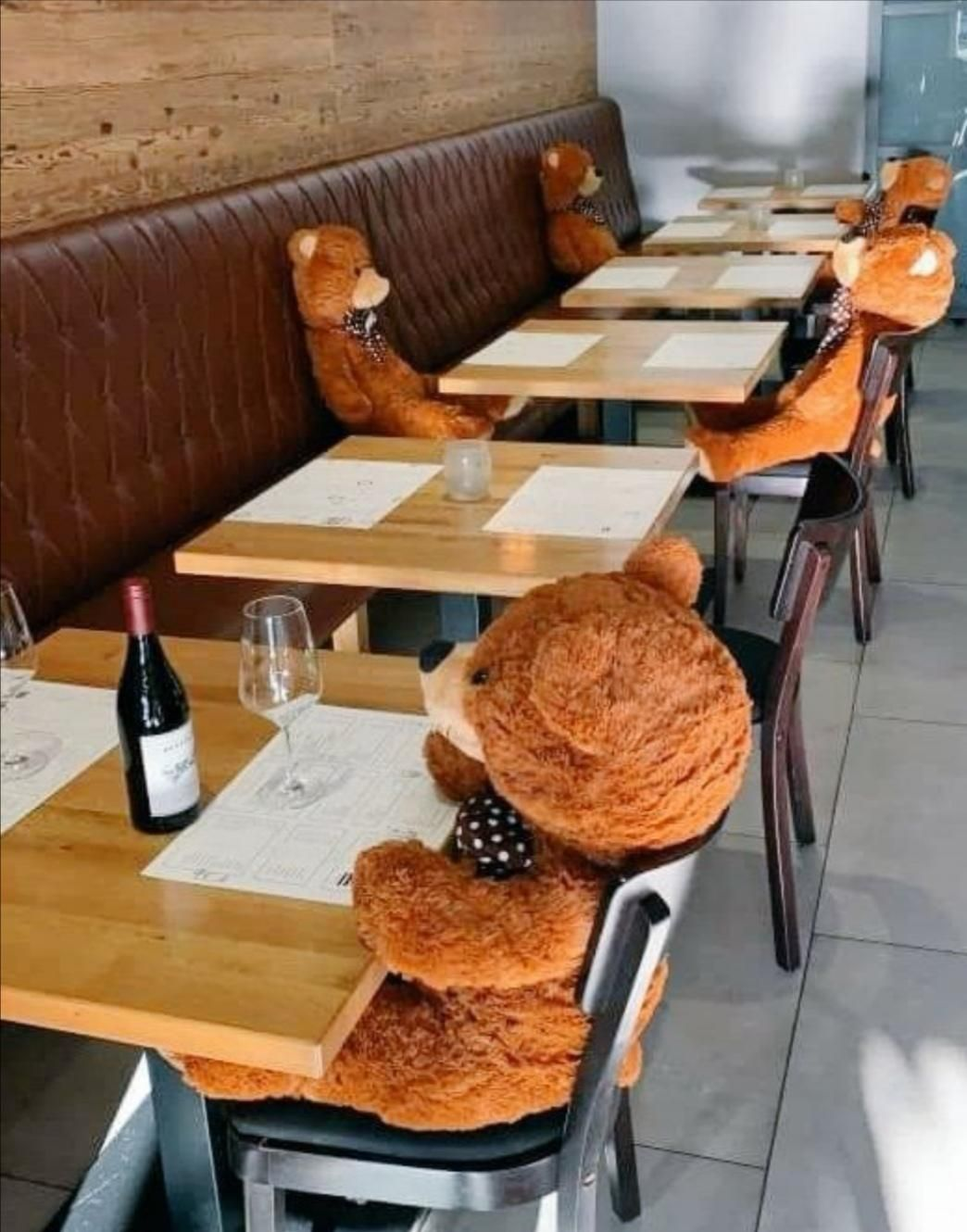 This restaurant got teddy bears to keep peoples tables apart during the pandemic