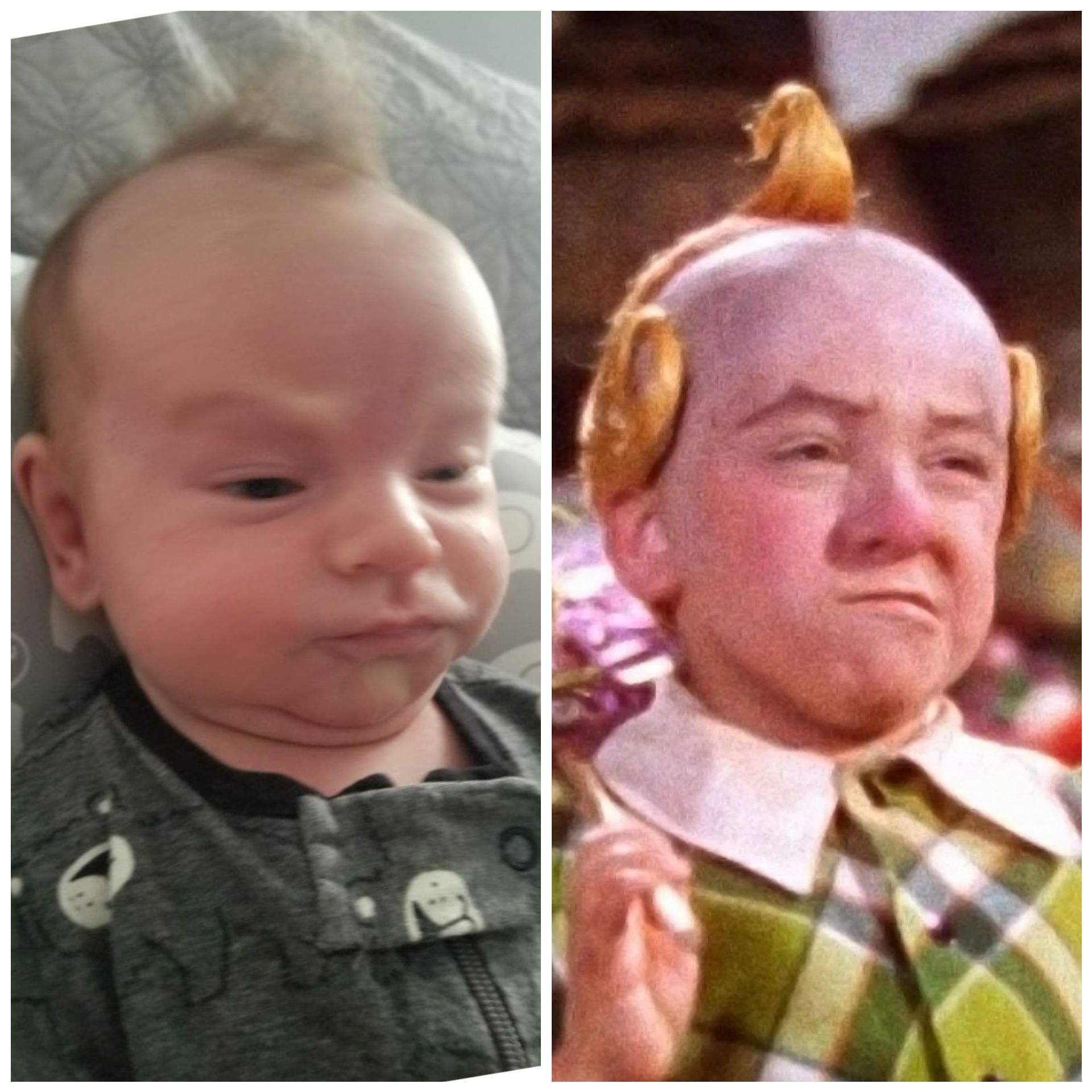 My nephew obviously has connections to the lollipop guild.