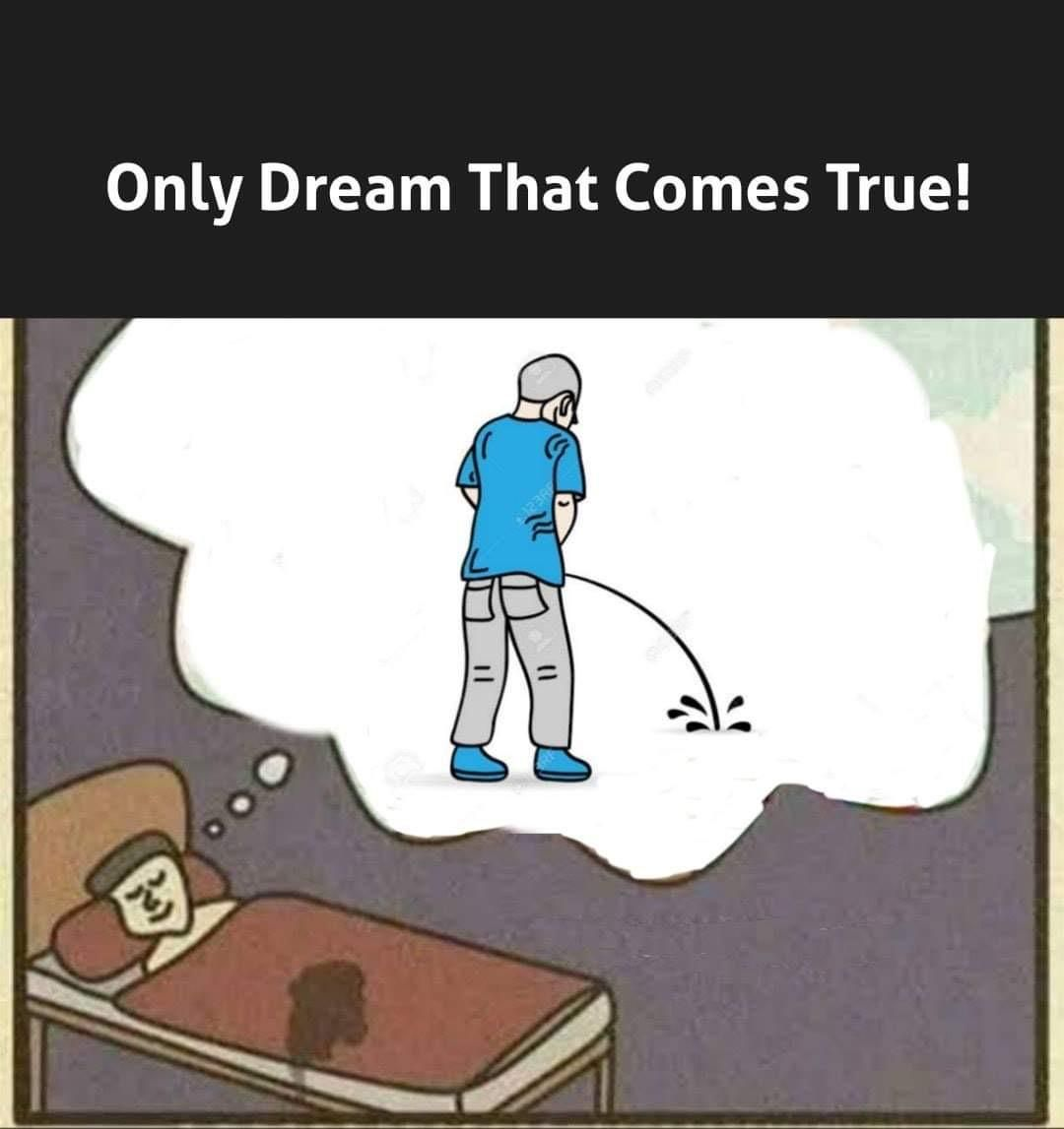 The only dream that comes true!