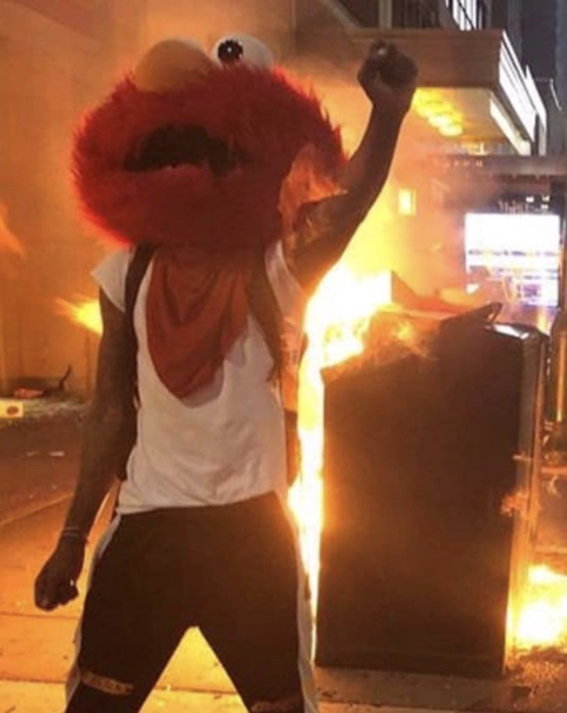 This Elmo protester.
