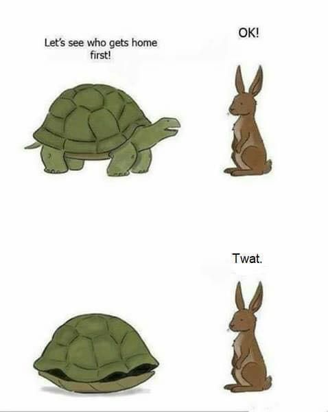The Tortoise and the Hare Sequel
