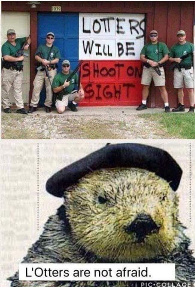 L'Otter has a perticular set of skills.