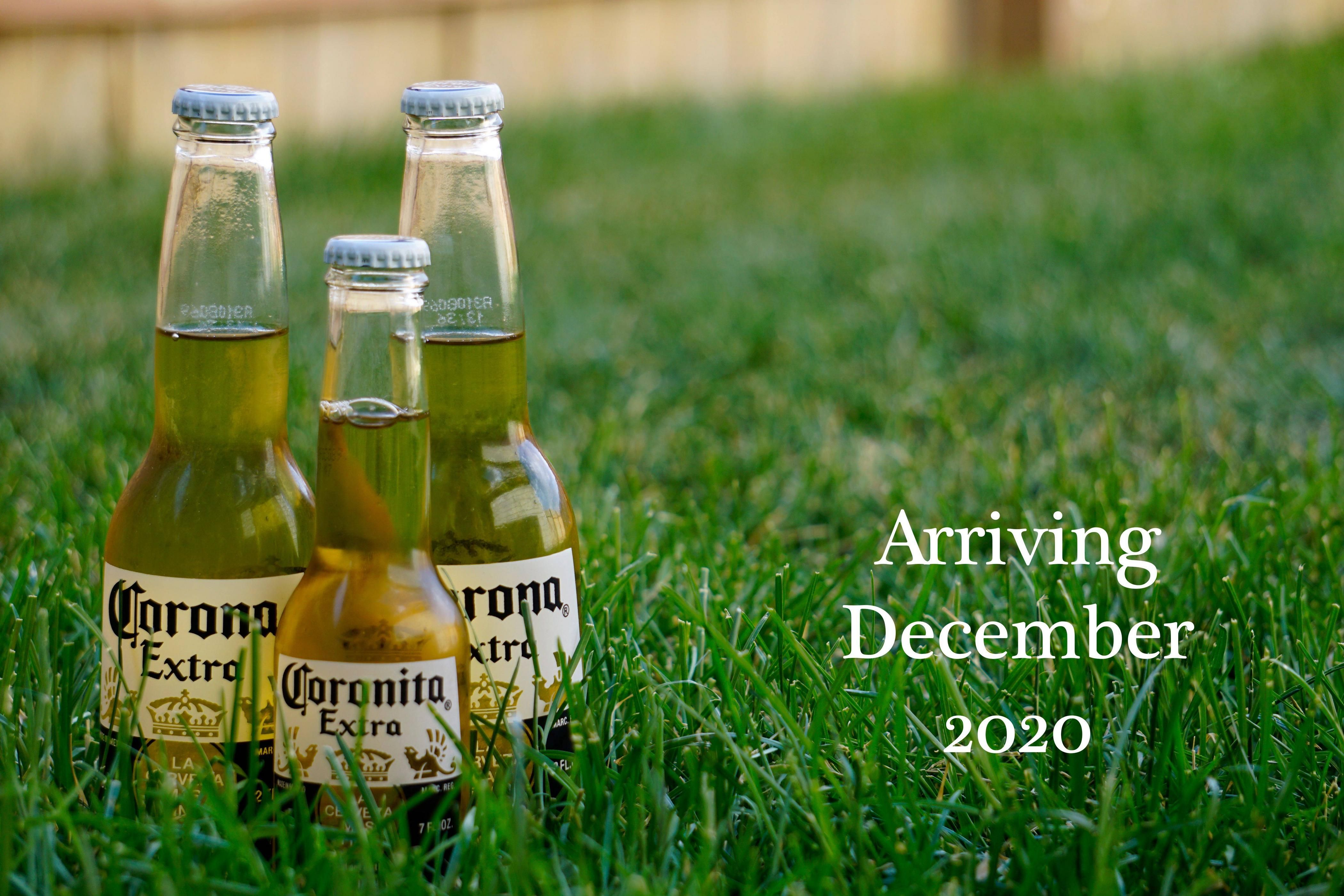 My wife and I found out we will be having a Coronavirus baby. This is how we announced to close friends.