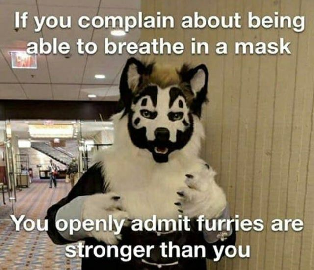 FURRIES RISE UP
