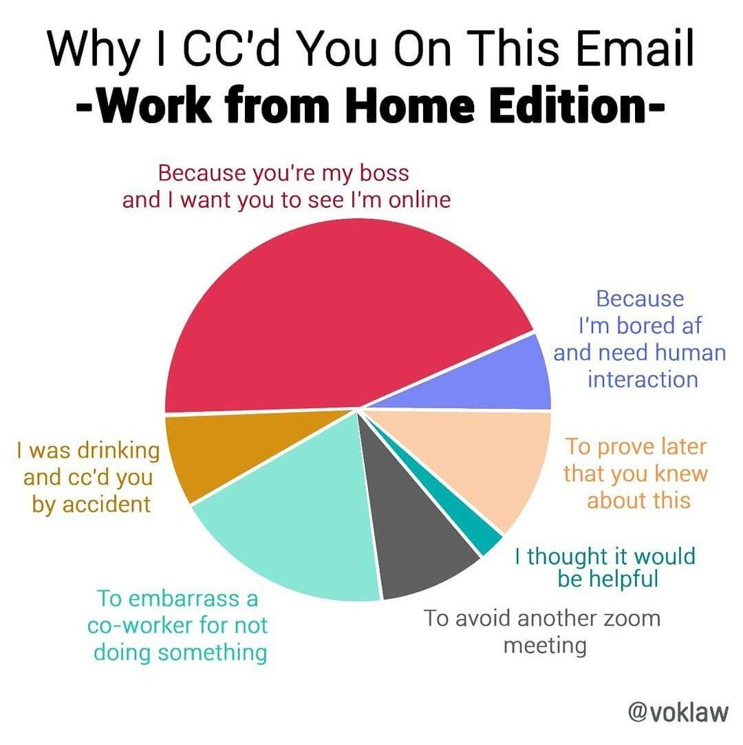 I really don't like zoom meetings