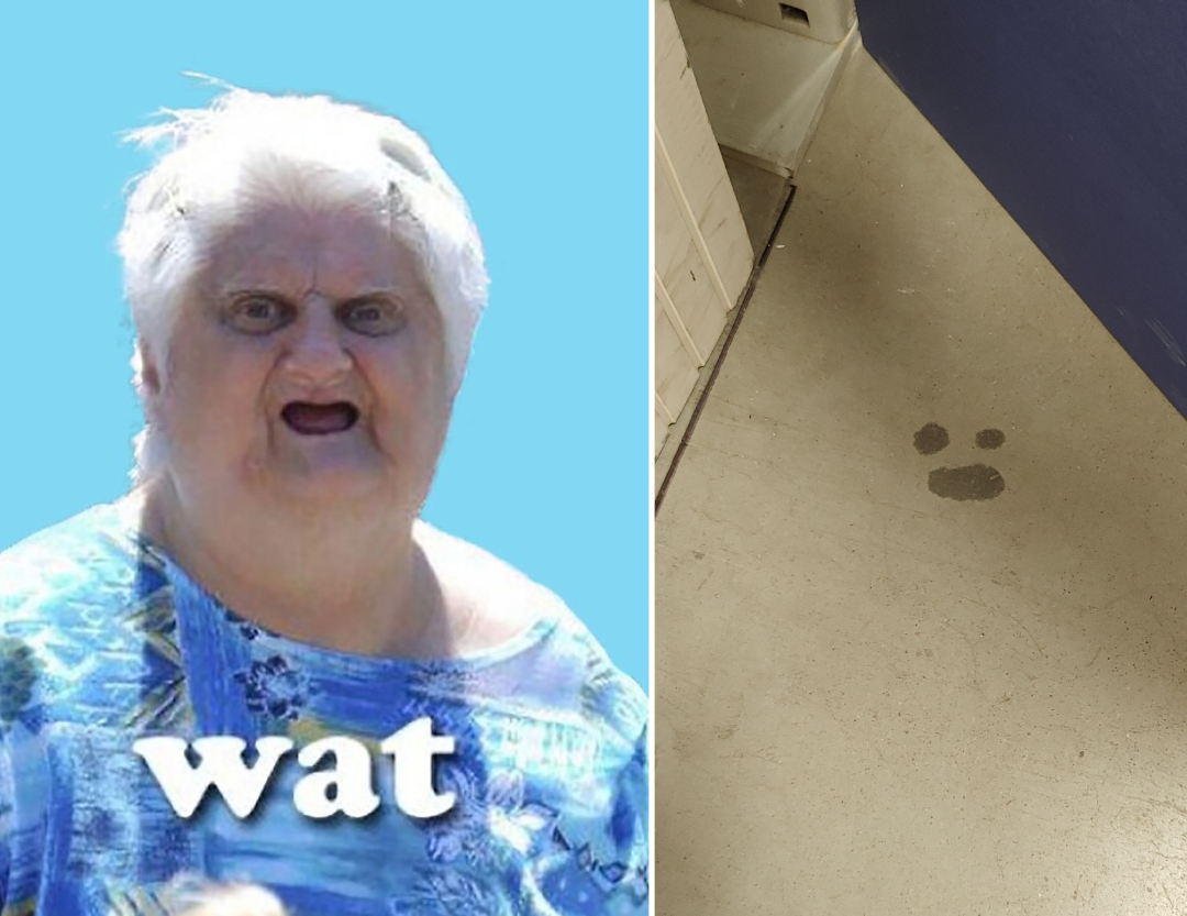 Saw a spot on the floor at work and instantly thought of the Wat lady