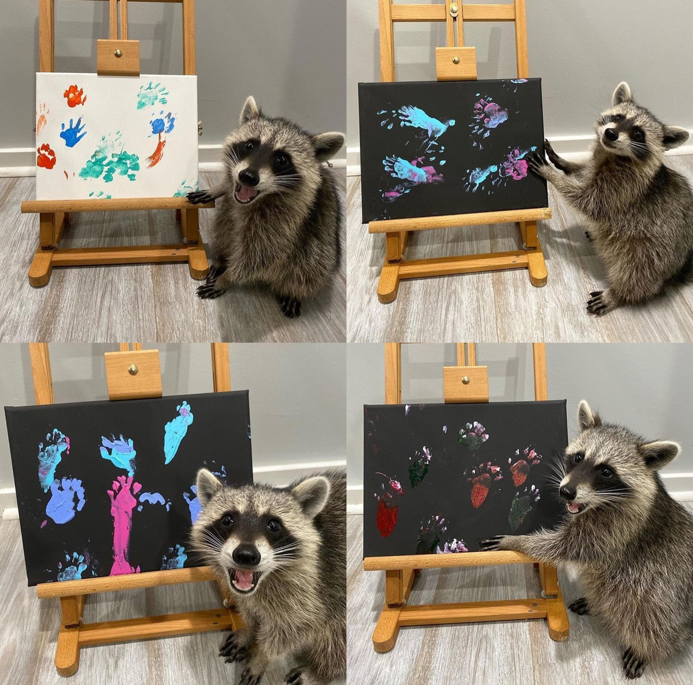 Hey! I drew it!