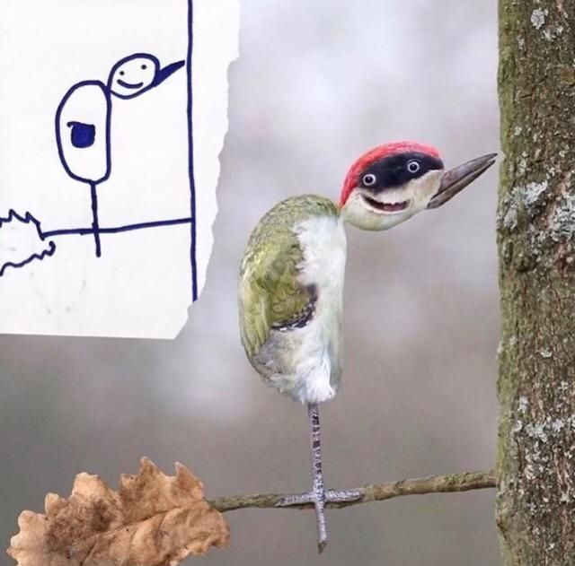 Dad creates his kids drawings in photoshop