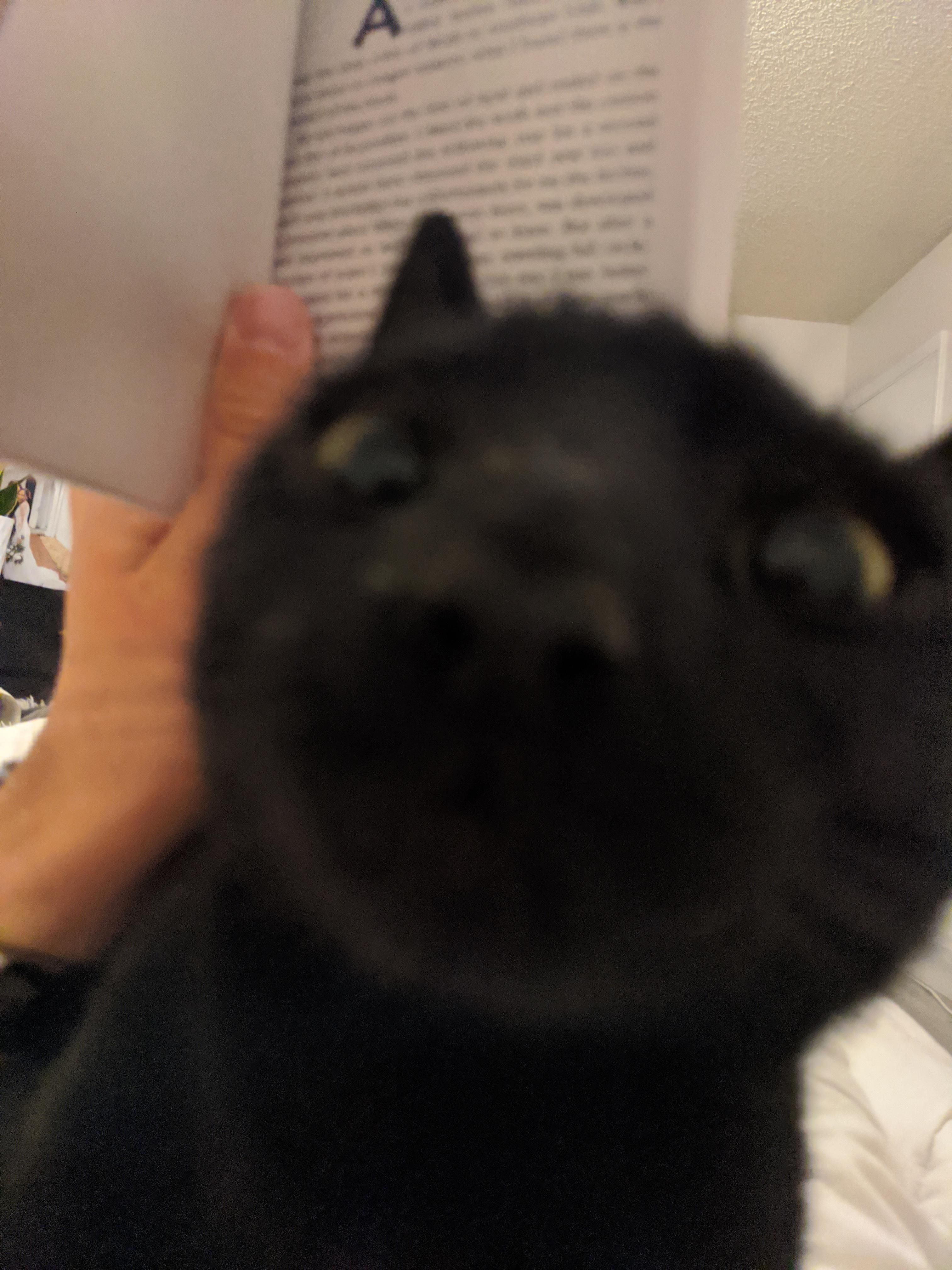 First person view of attempting to read.