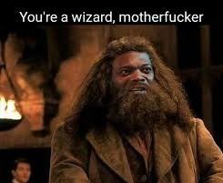 Alternate reality Harry Potter!