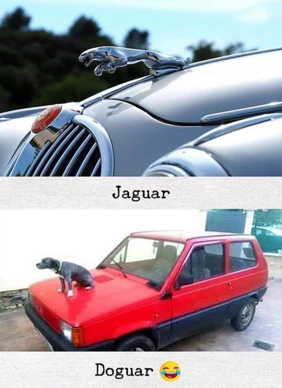 Top car brands