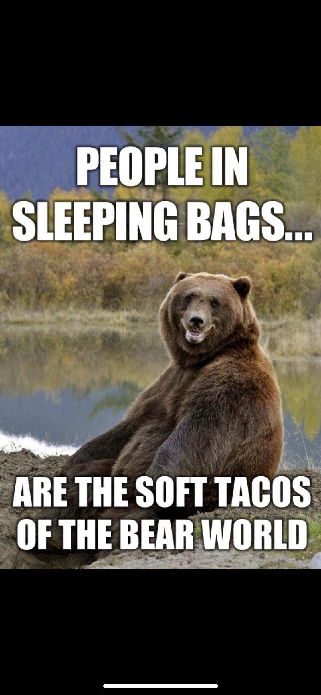 Mexican bears!