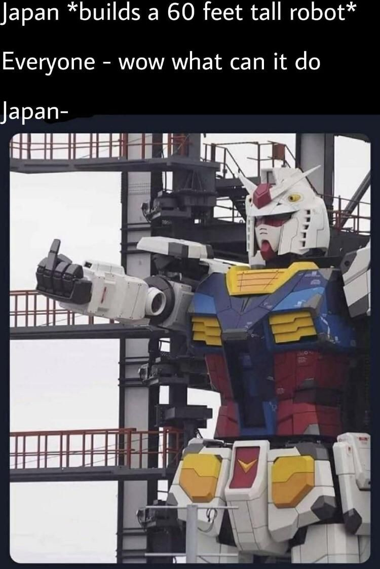 Japan seek to amaze me every day