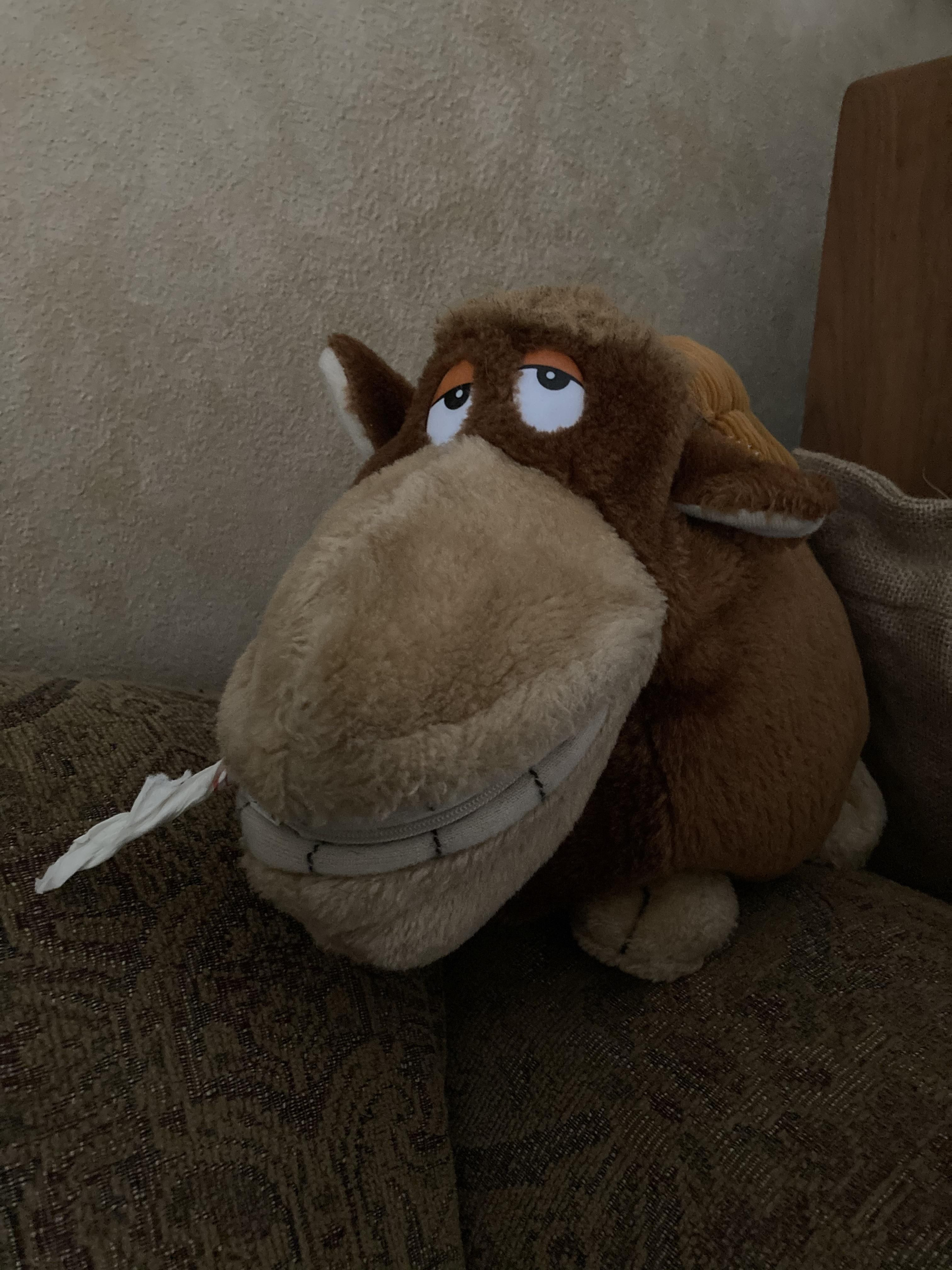 """This stuffed moose in my girlfriend's house. I rolled up a tissue and stuck it in his mouth. He is now """"Stoner Moose."""""""