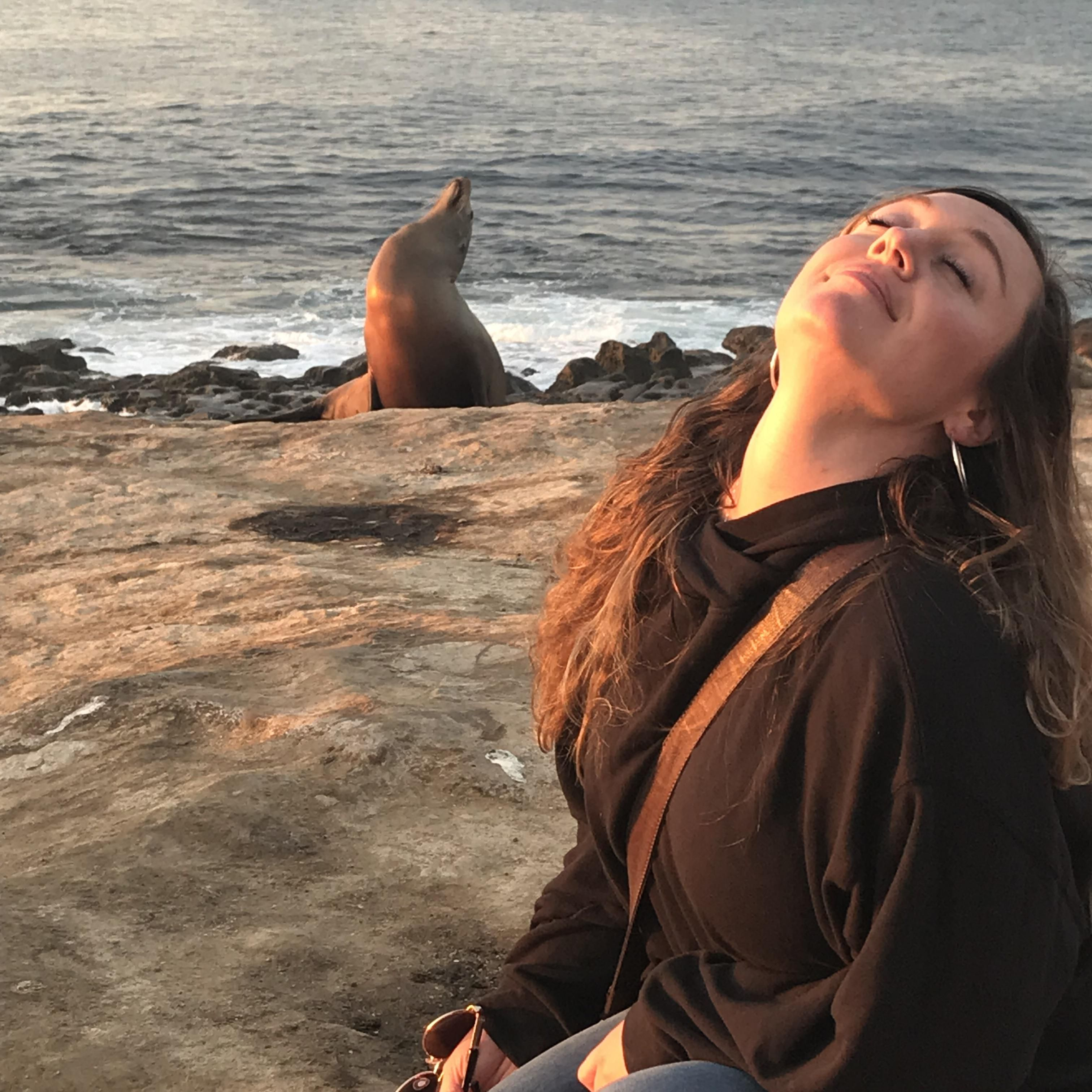 Sometimes you just need to sit in the sun and look fabulous. This sea lion gets it.