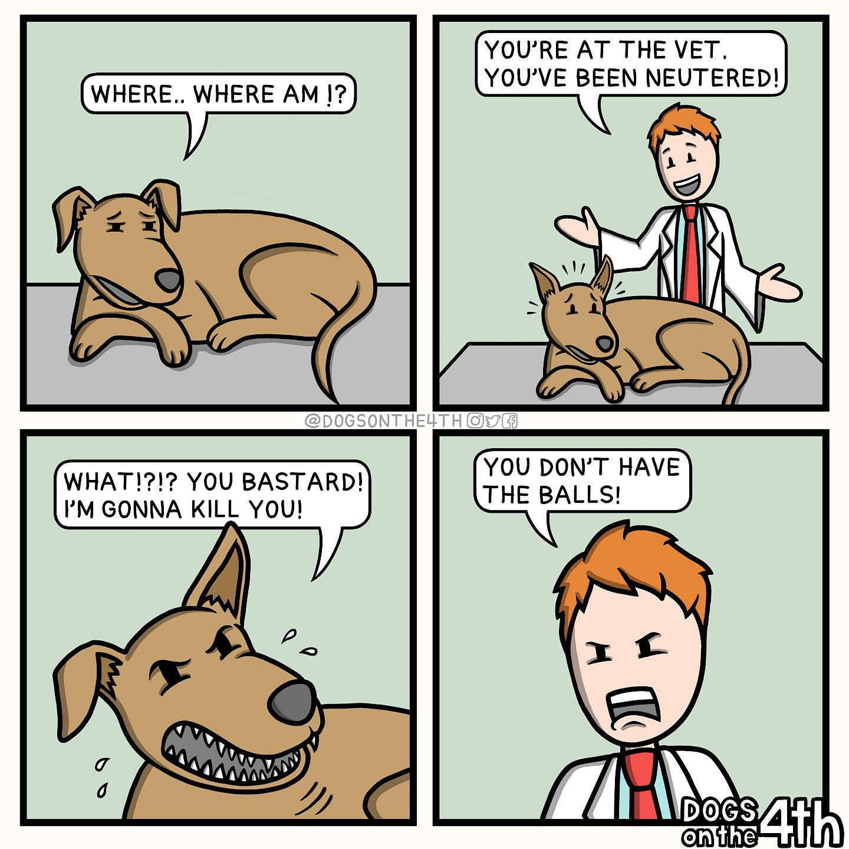 Worse than his bite.