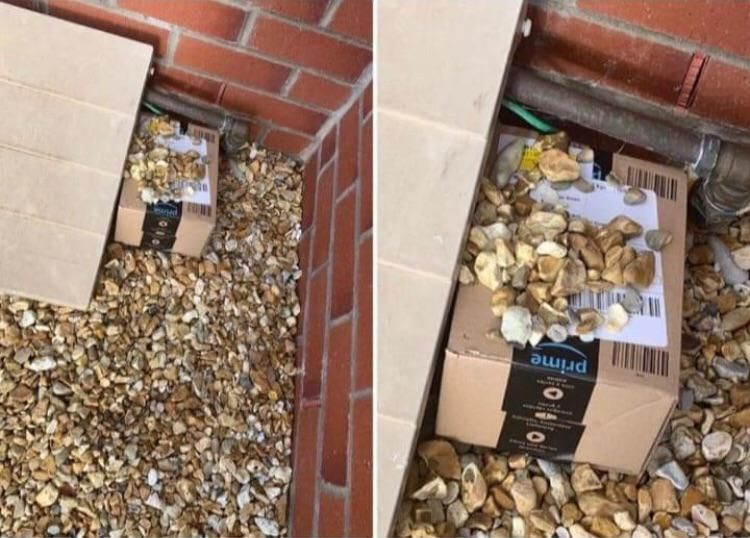 Thanks amazon guy for hiding my package!