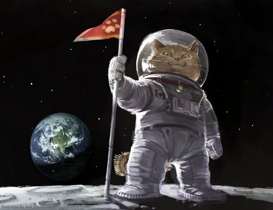 Googled cat astronaut. Was not dissapointed.