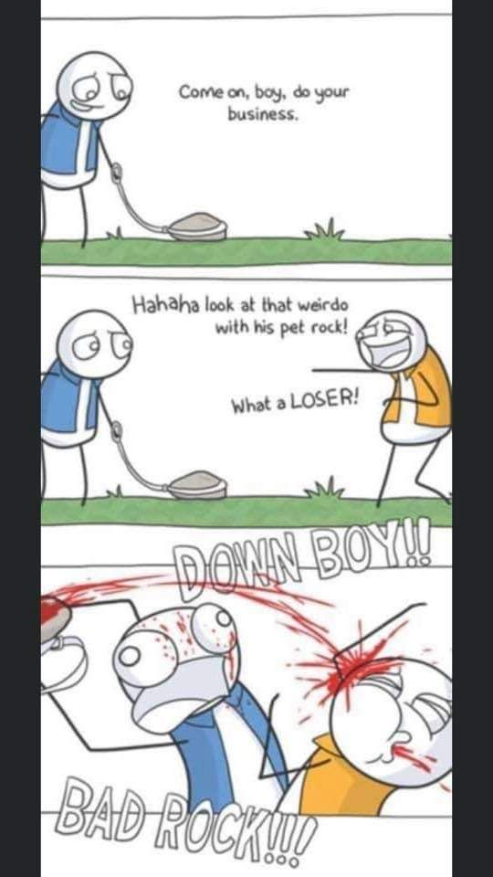 We could all use a pet rock these days