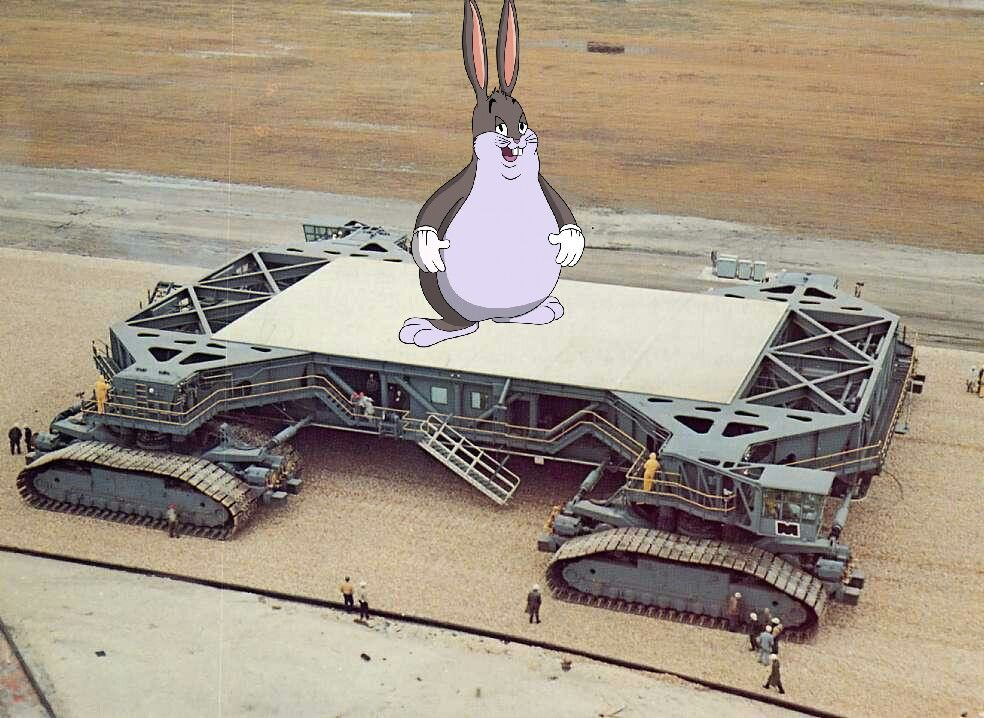 chungus has been dememified and launched into outer space