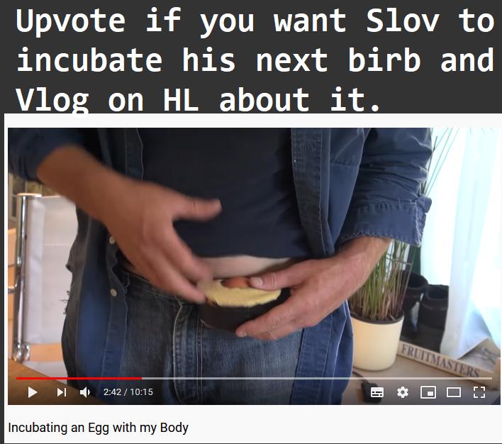 #BirbChallenge4Slov