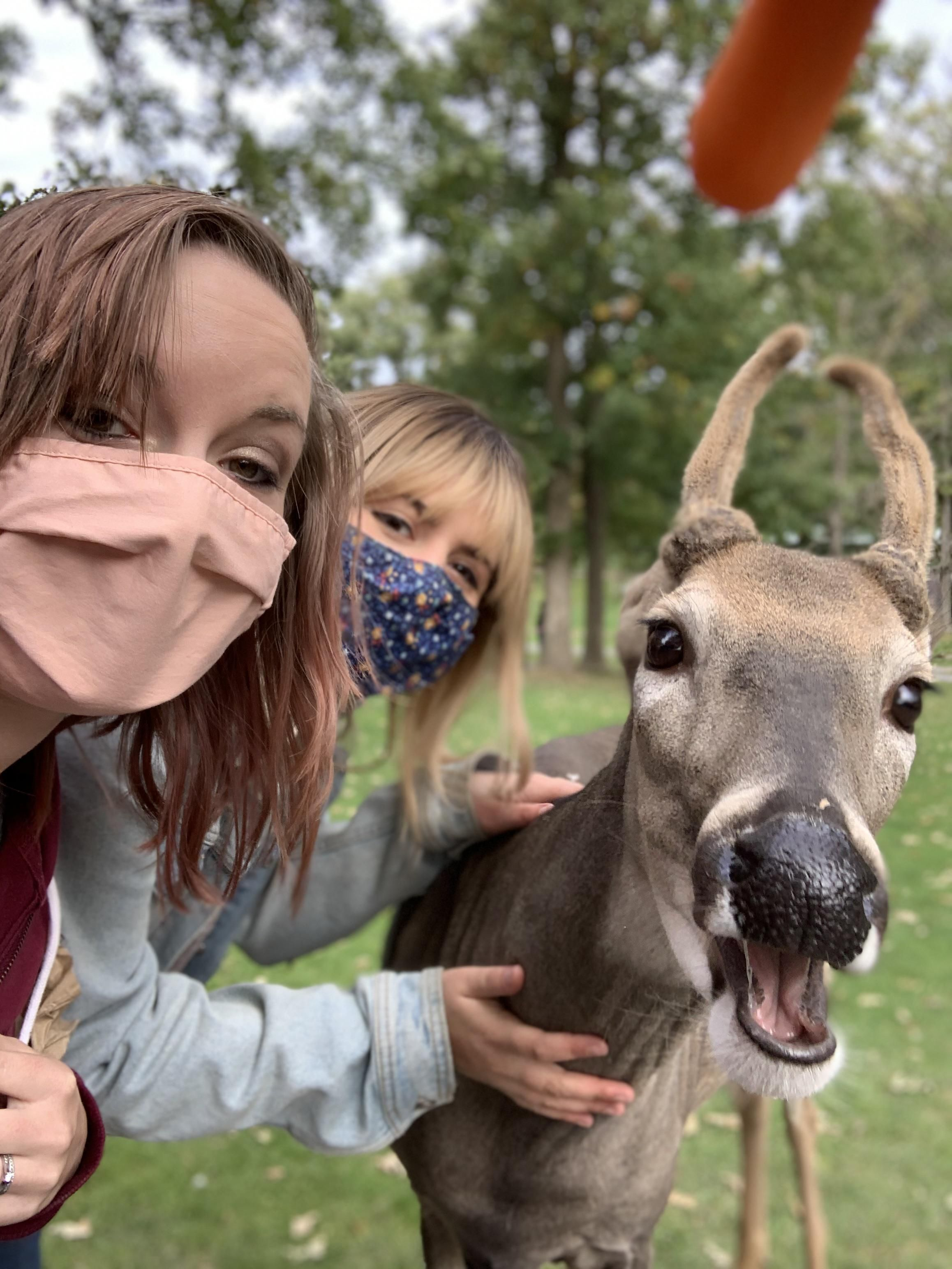 My sister and I wanted a selfie with a deer.