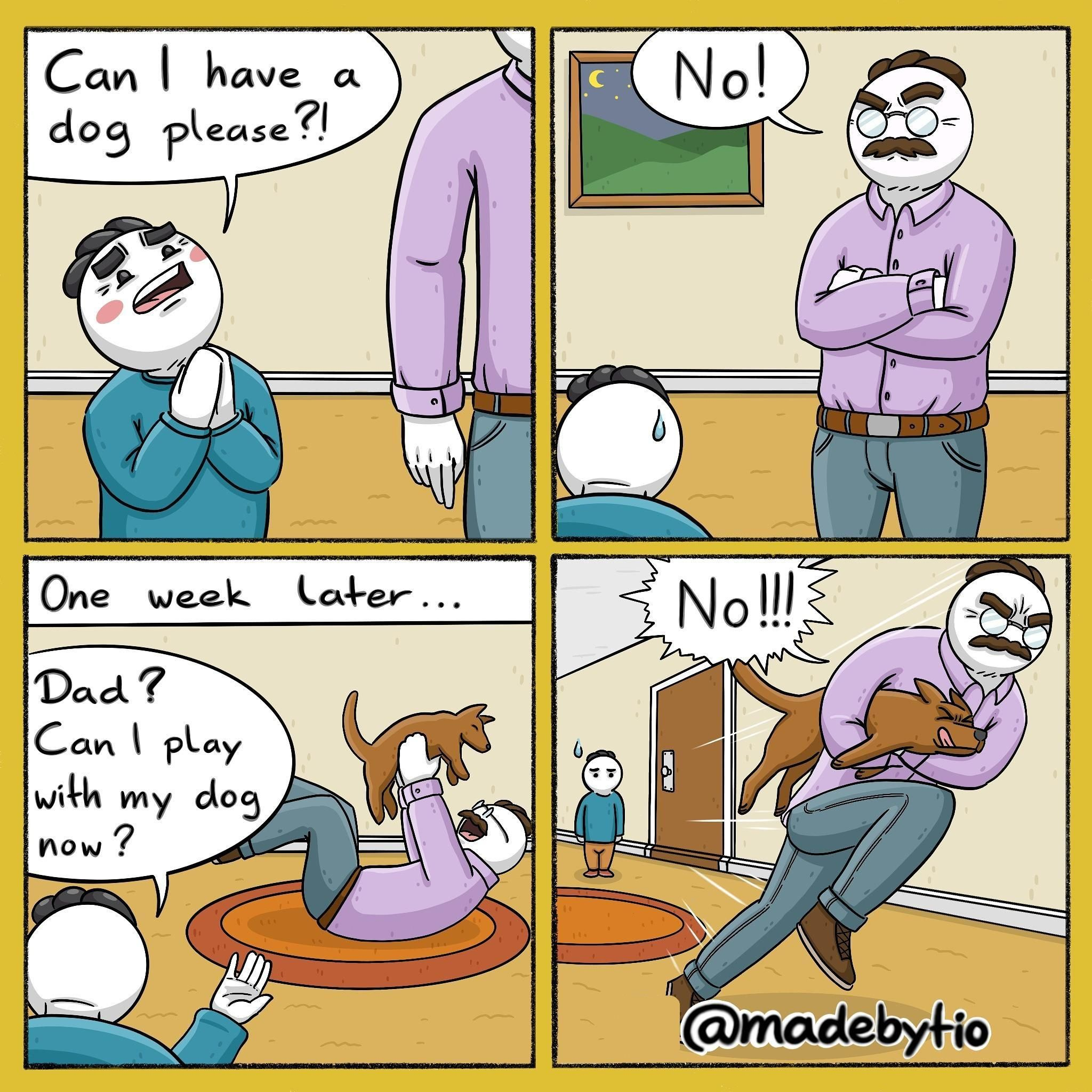 Dads in a nutshell