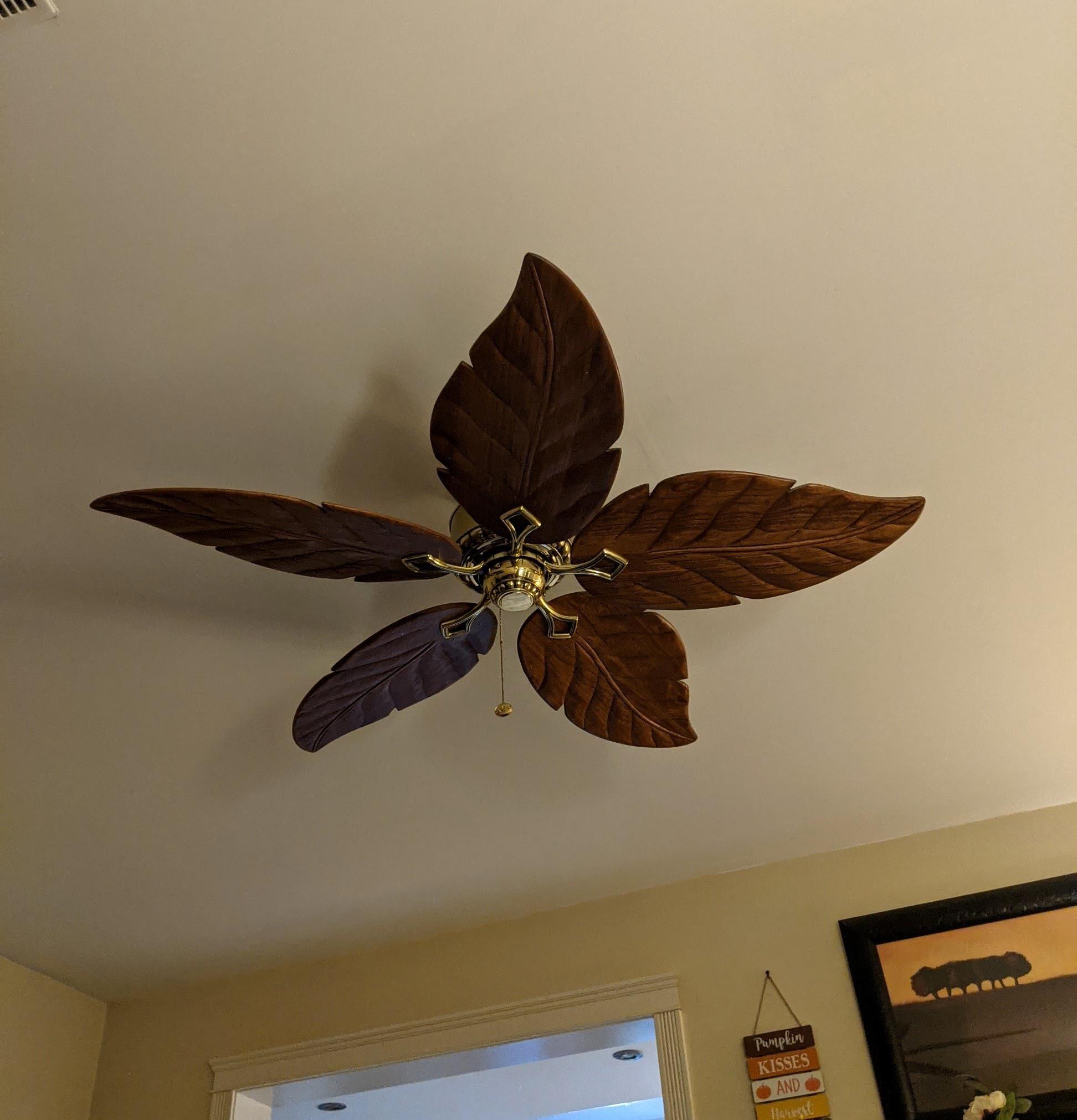 My girlfriend's ceiling fan is also a leaf blower.