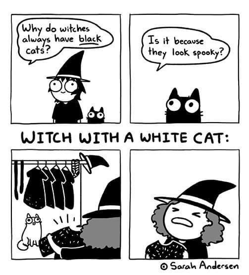 Why do witches have black cats