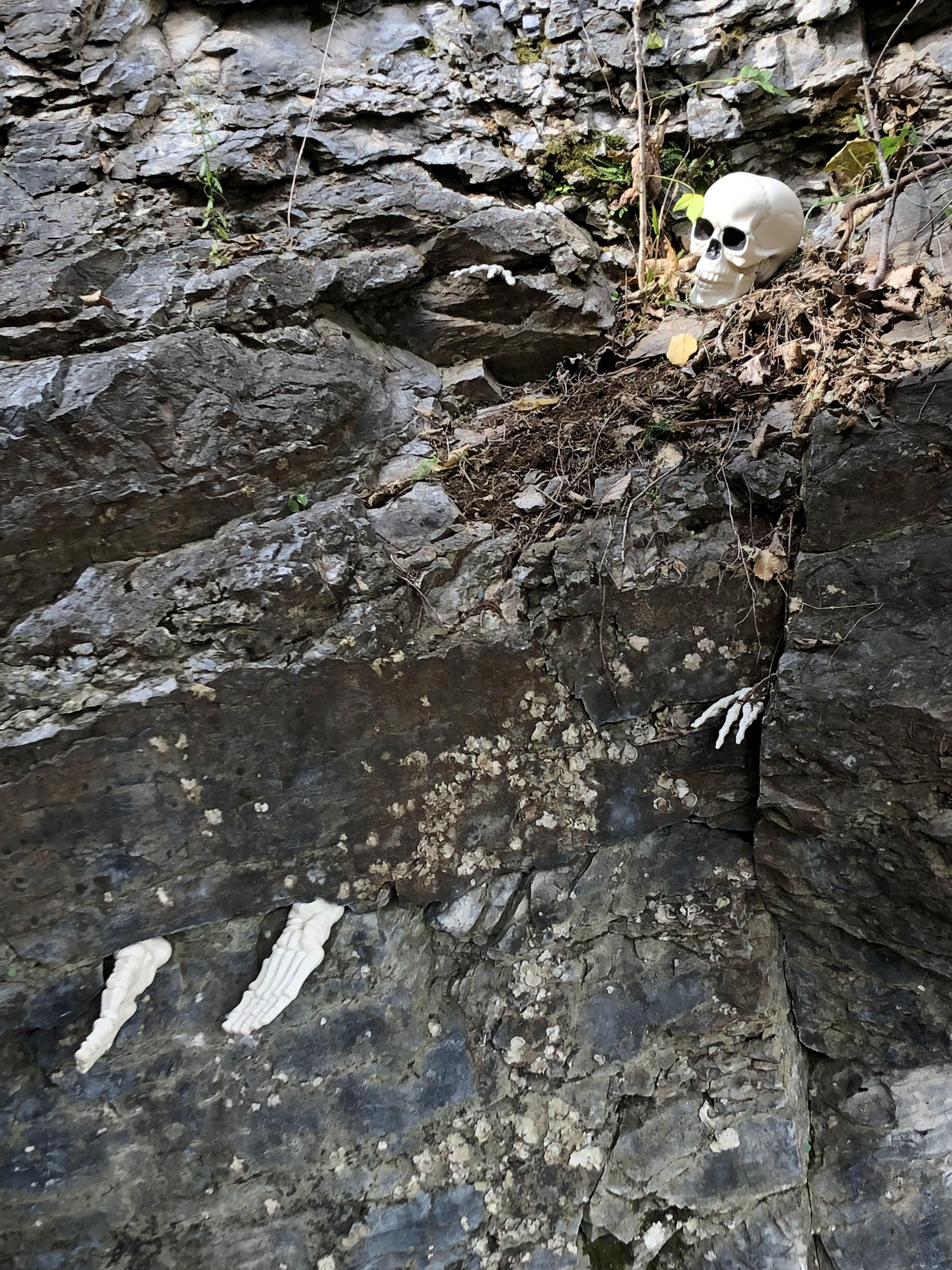 I work at a cave, and they put me in charge of decorating for Halloween. Probably a mistake on their part.