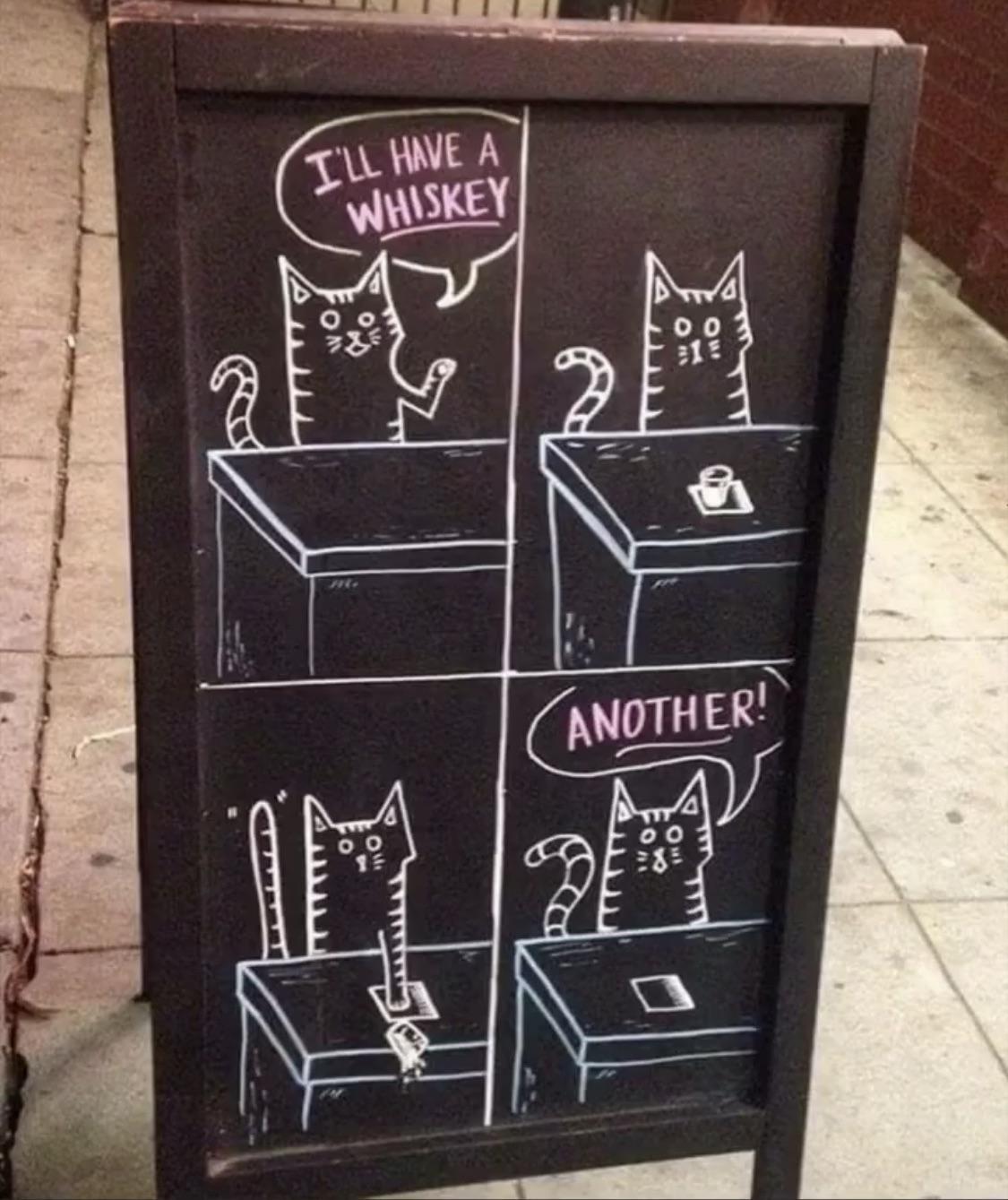 Whiskey Cat