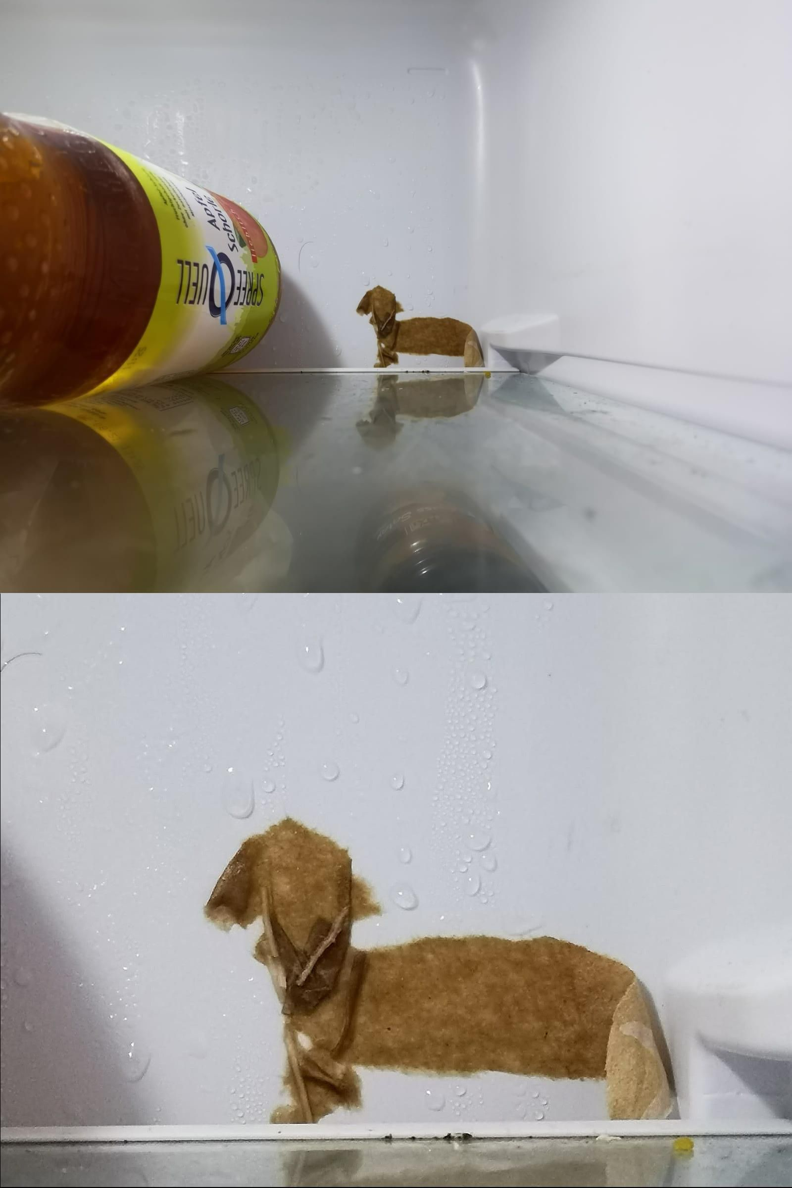 The piece of paper that is frozen to the back of my fridge looks like a wiener dog.