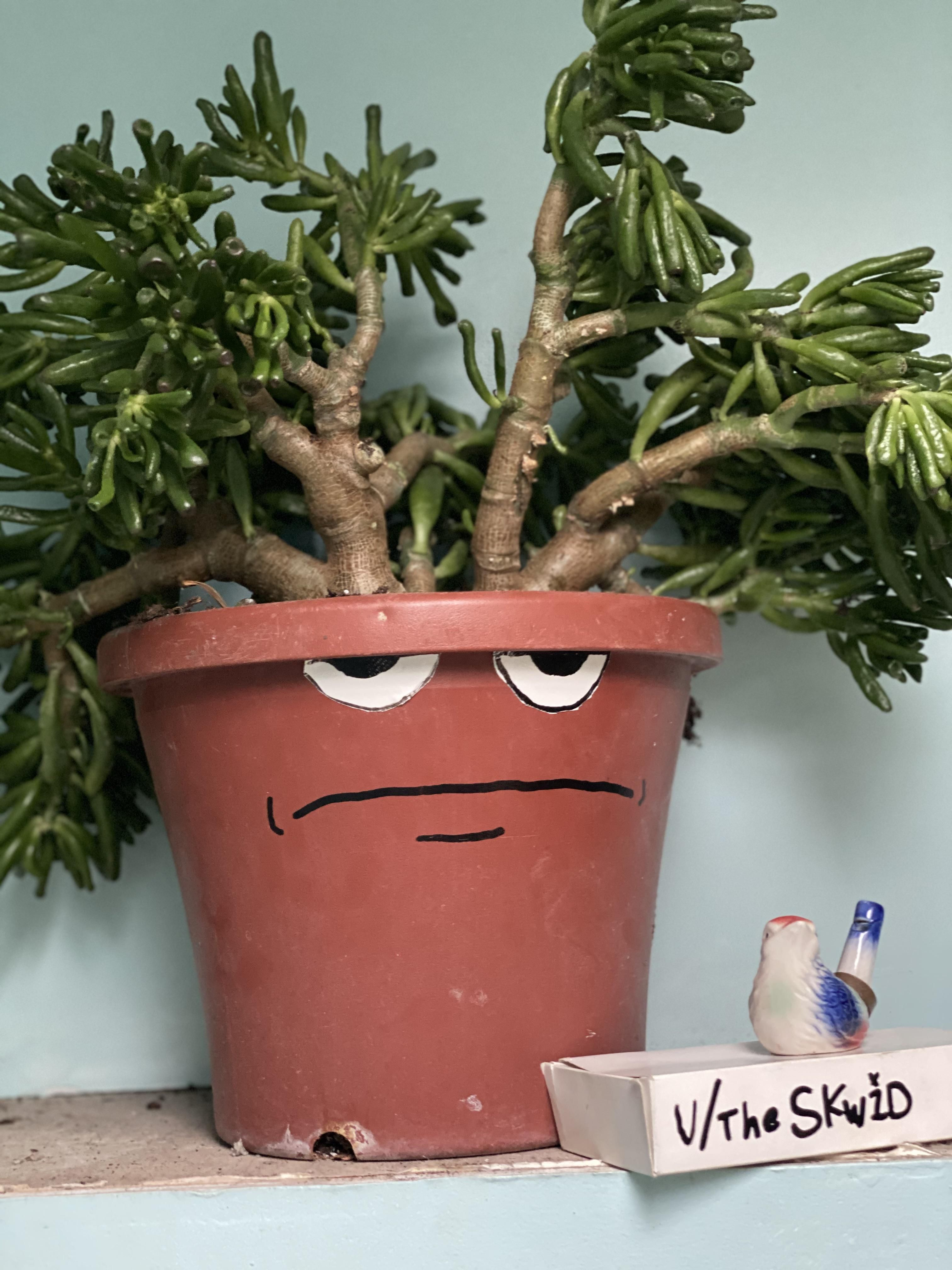 My low effort way to make pots distinguished.