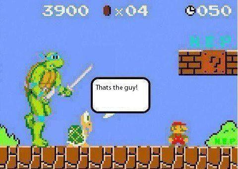 Turtle backup