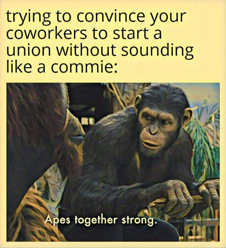 Apes together strong.