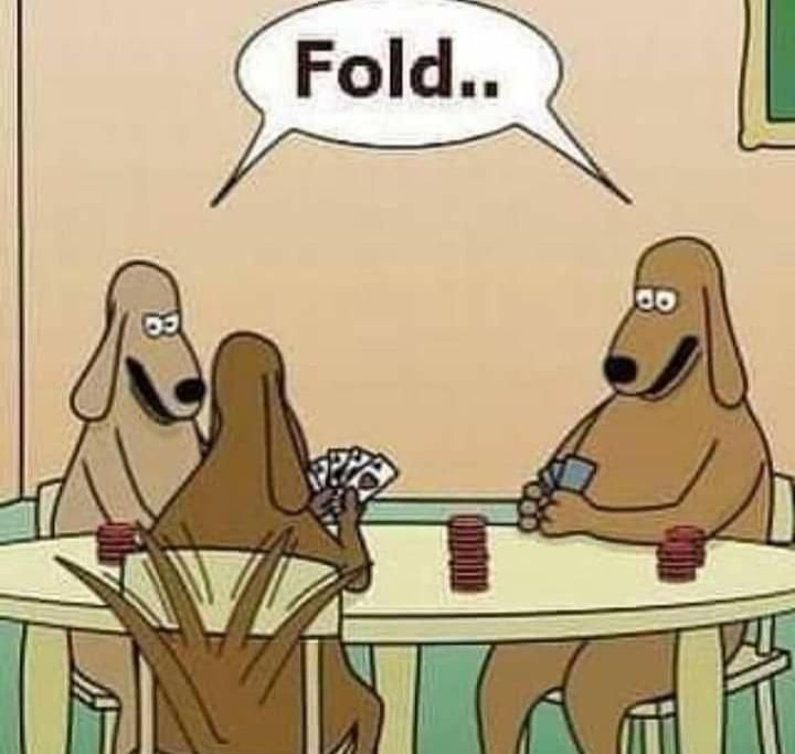 This is why dogs can't play poker.